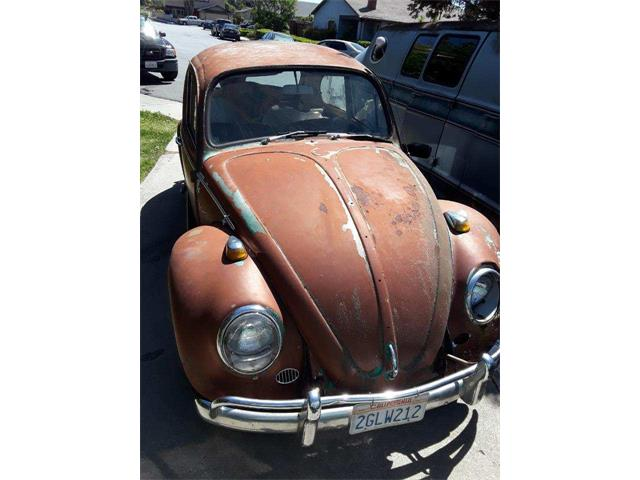 Picture of '65 Beetle - PSEQ