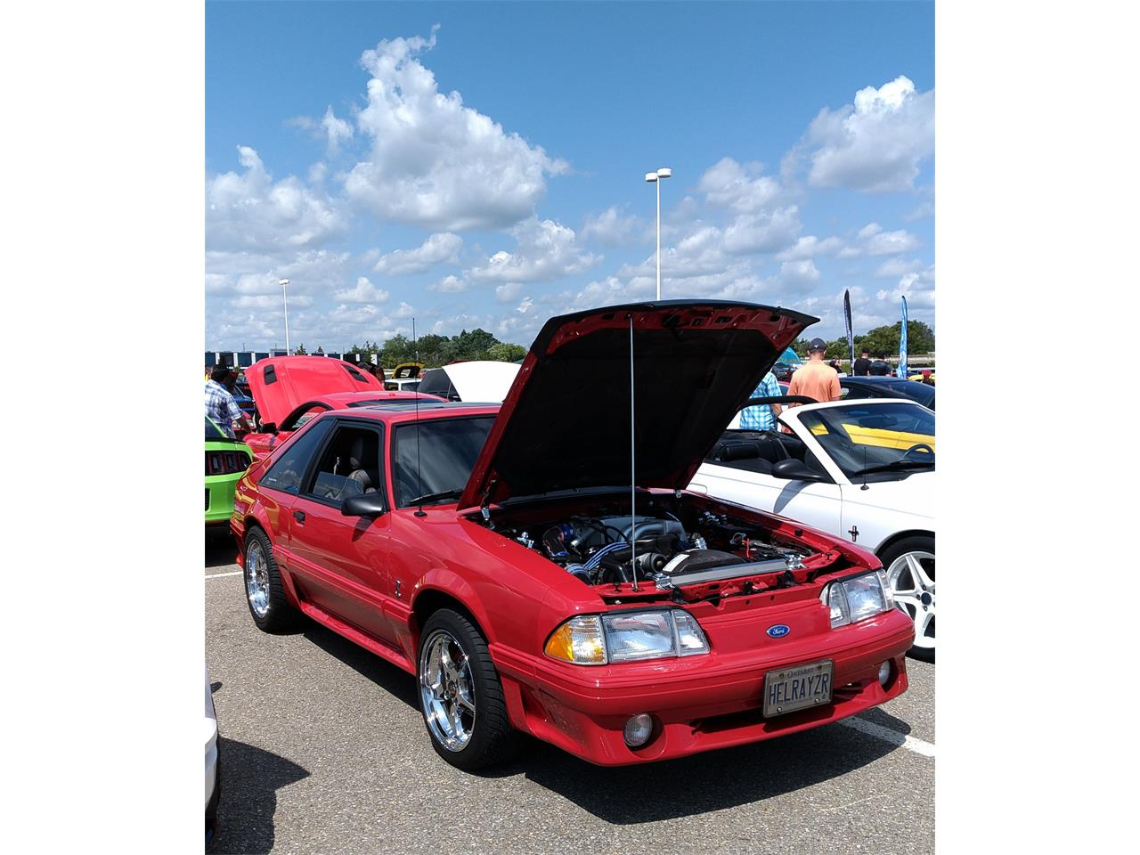 Large Picture of '87 Mustang Cobra Offered by a Private Seller - PSFC