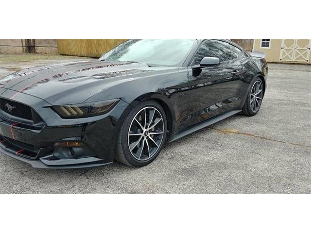 Picture of '17 Mustang - PSHU
