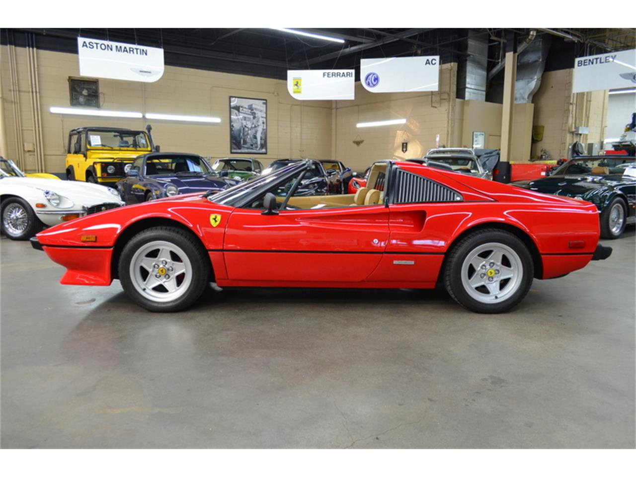 Large Picture of 1981 308 GTSI located in Huntington Station New York - $64,500.00 Offered by Autosport Designs Inc - PSNH