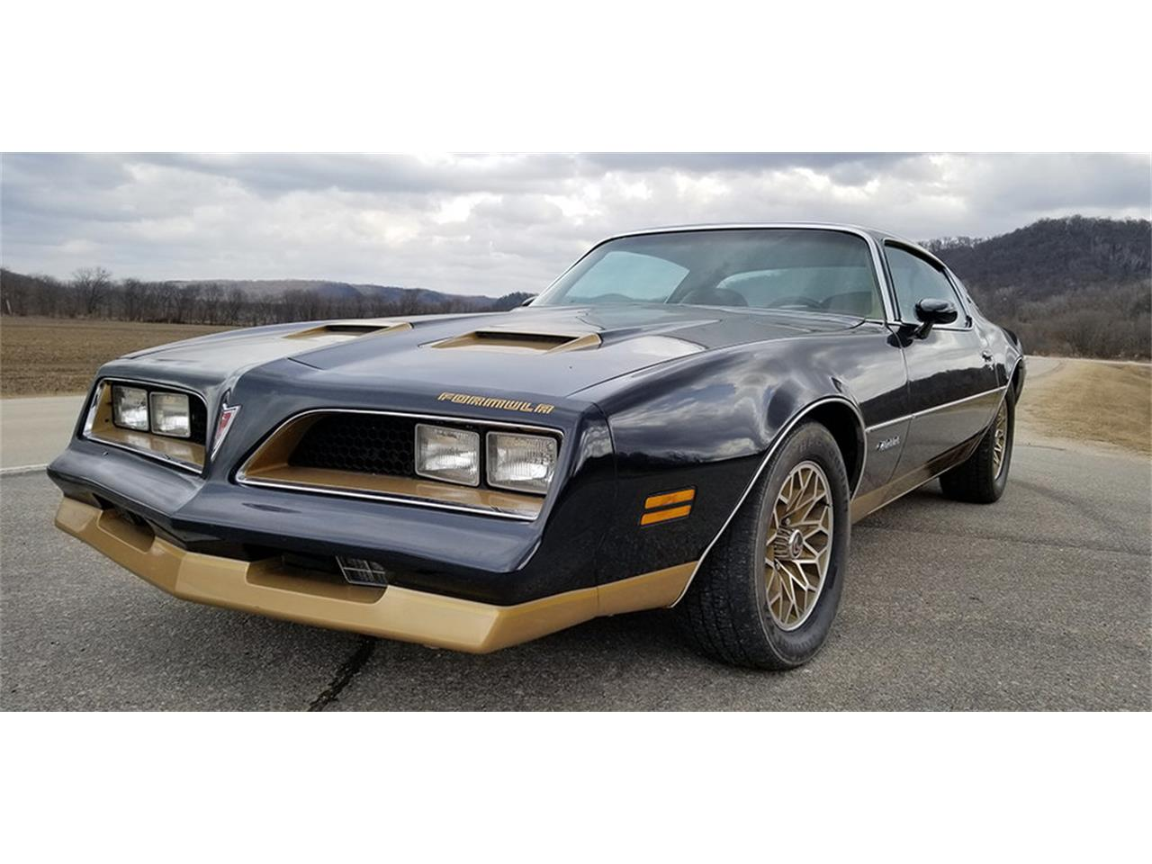 Large Picture of '78 Firebird Formula - PSYP