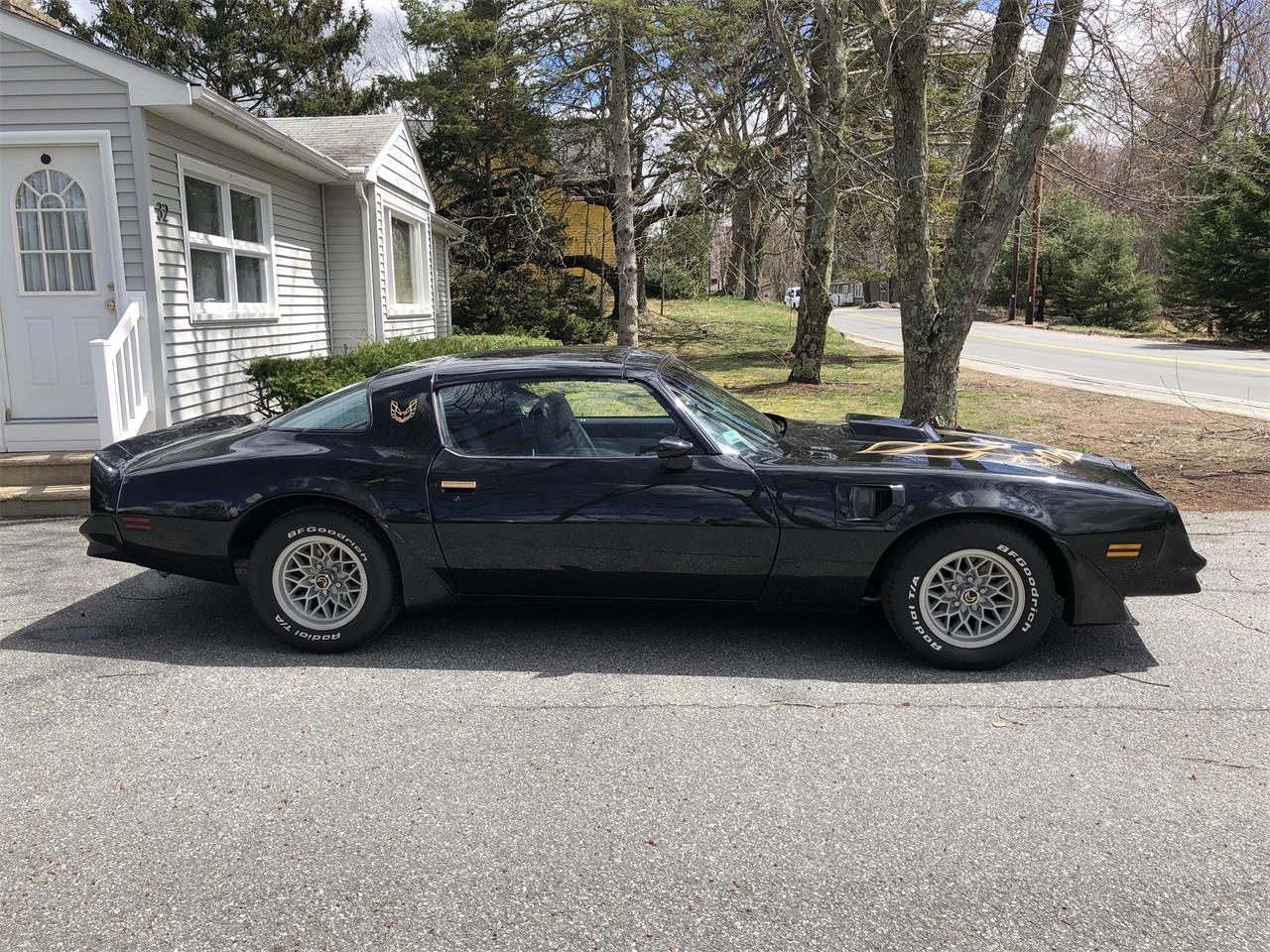 Large Picture of '81 Firebird Trans Am - PT07