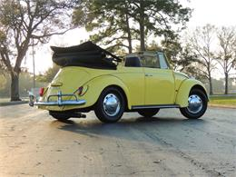 Picture of '67 Beetle - PTBV