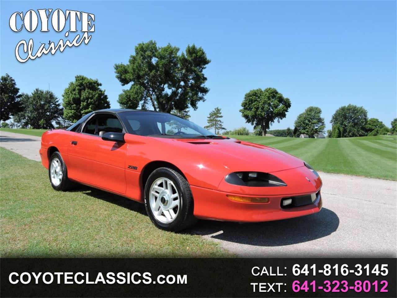 Large Picture of '94 Camaro - PTG8