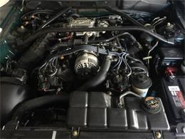 Picture of '97 Mustang - PTRN
