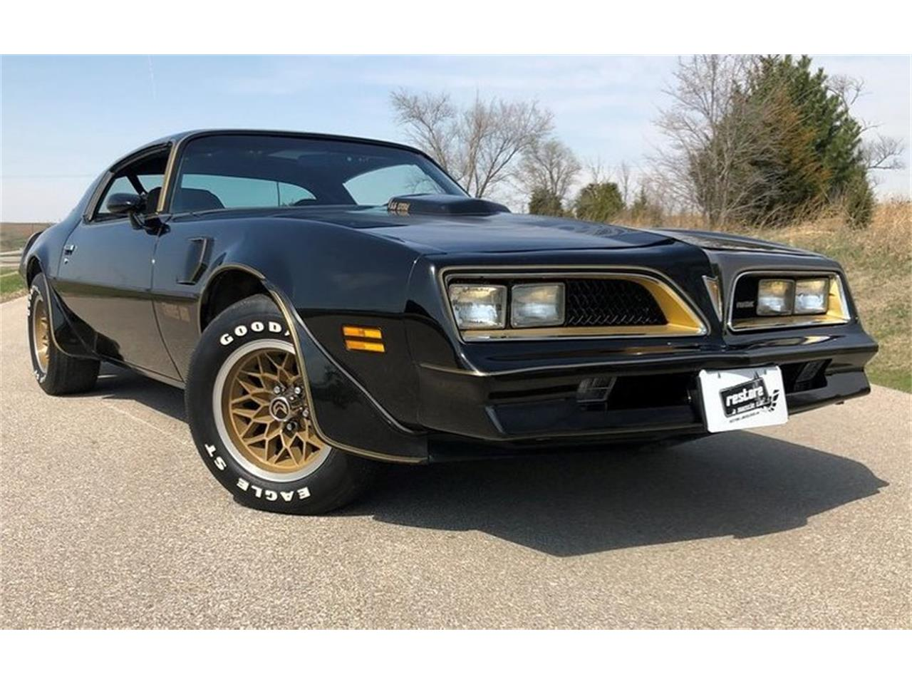 Large Picture of '78 Firebird Trans Am - PUIA