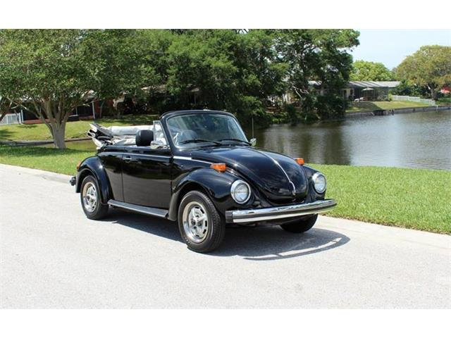 Picture of '79 Beetle - PUT3