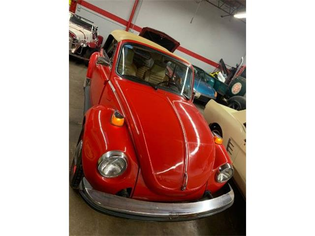 Picture of '76 Beetle - PUW3