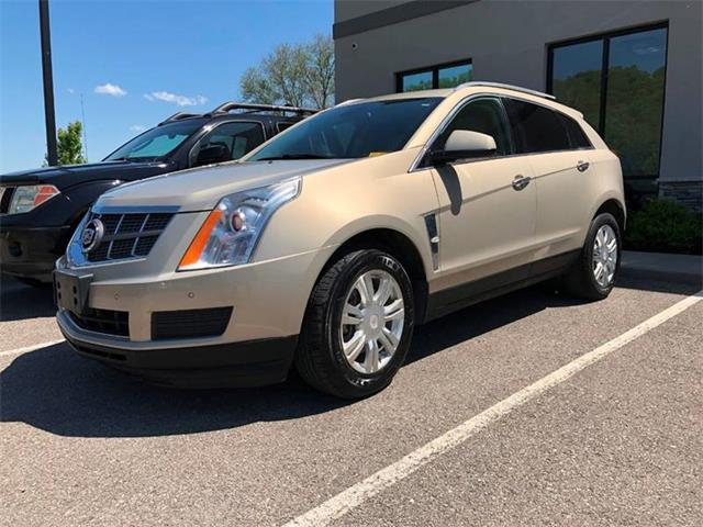 Picture of '10 SRX - PV1J