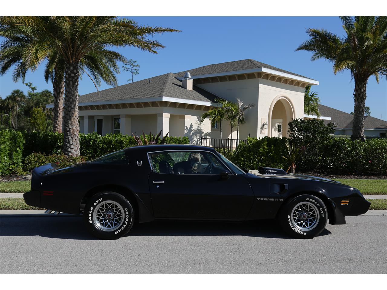 Large Picture of '80 Firebird Trans Am - PV4N