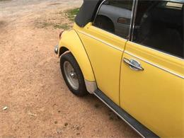 Picture of '71 Super Beetle - PQGB