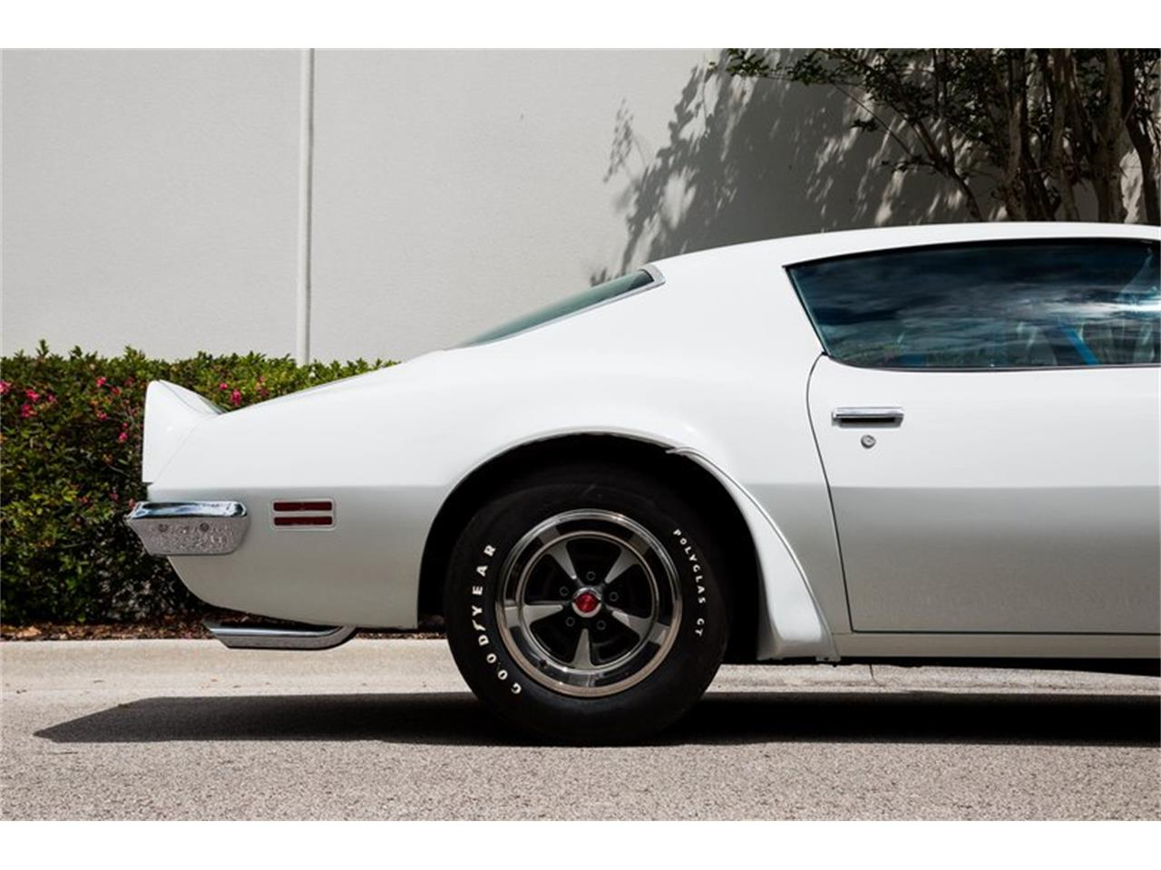 Large Picture of '70 Firebird Trans Am - PV8R