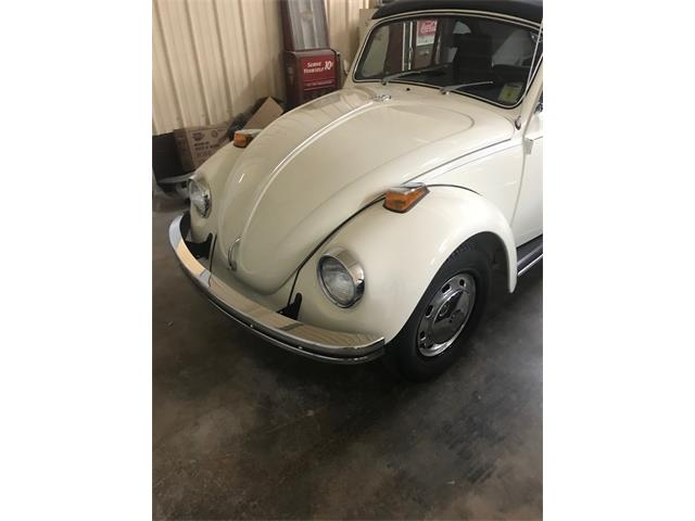 Picture of '70 Beetle - PQGQ