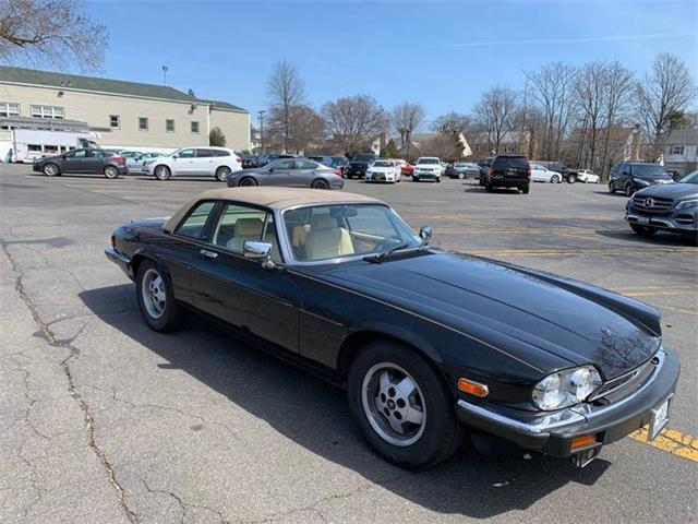 Picture of '87 XJS - PVD8