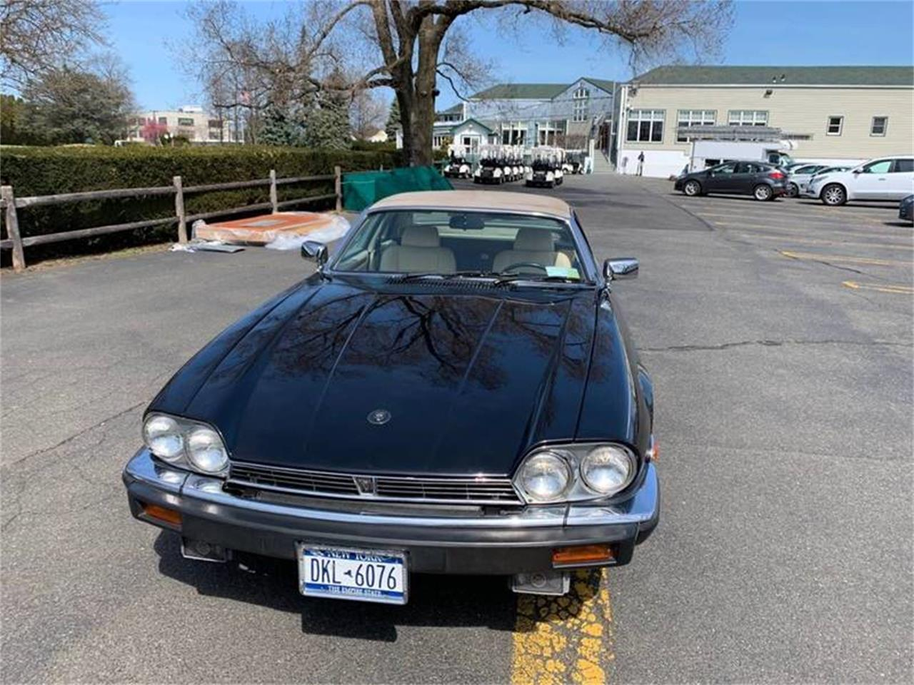 Large Picture of '87 XJS located in New York - PVD8