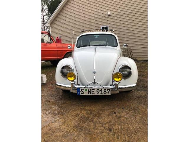 Picture of '63 Beetle - PVHJ