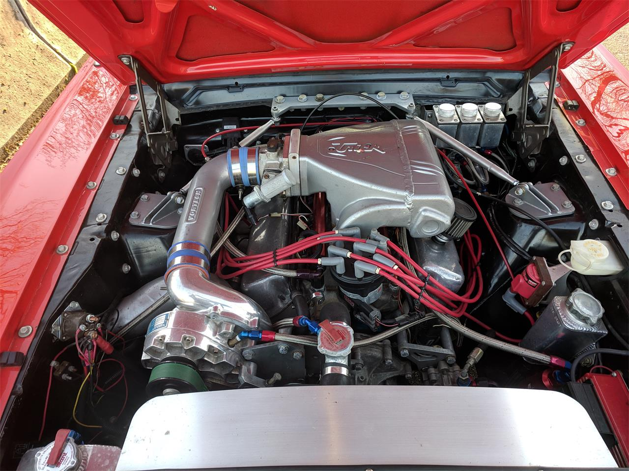 Large Picture of '65 Mustang - PVKZ