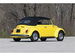 Picture of '68 Beetle - PVLR