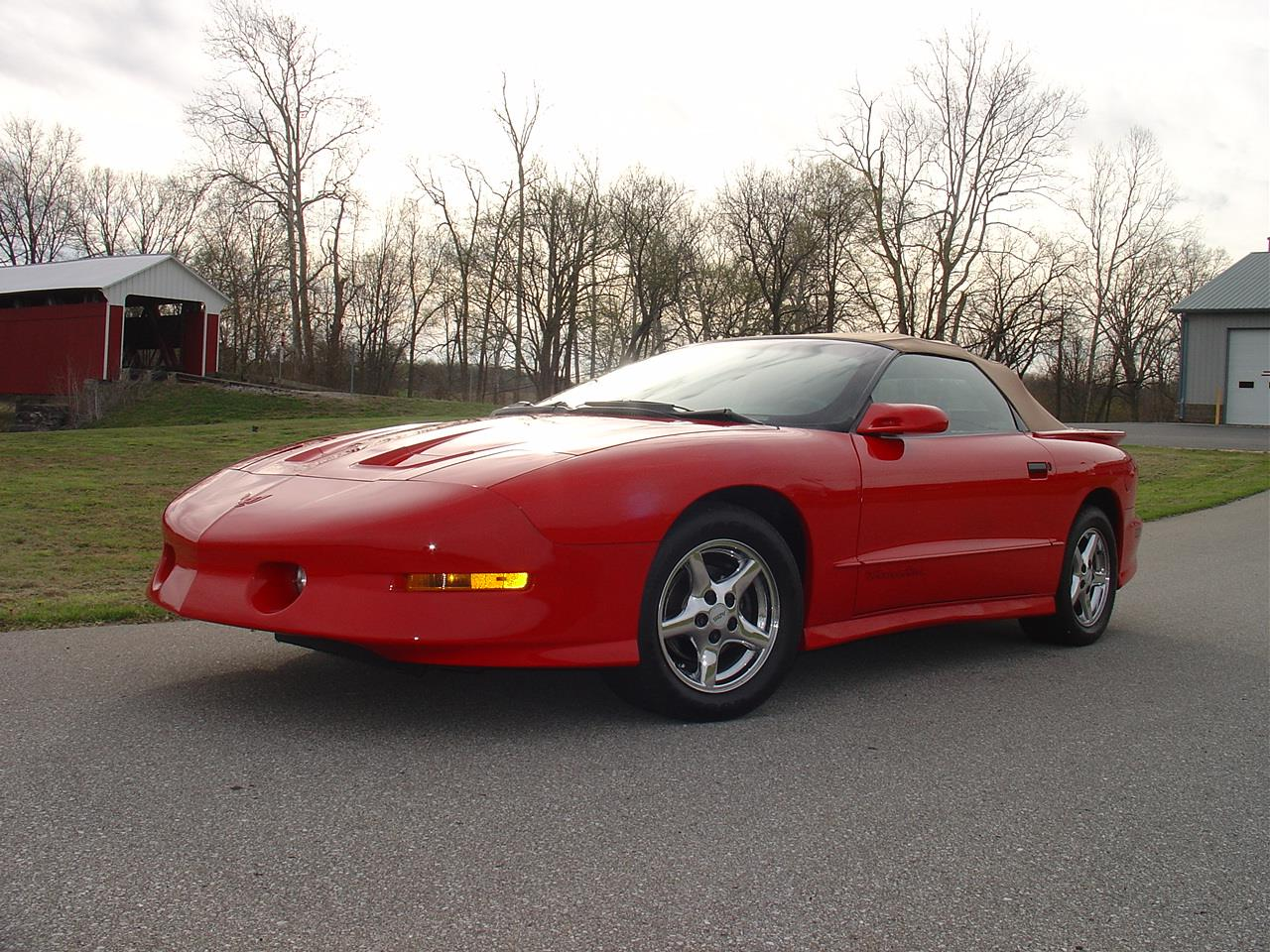 Large Picture of '95 Firebird Trans Am - PVN9