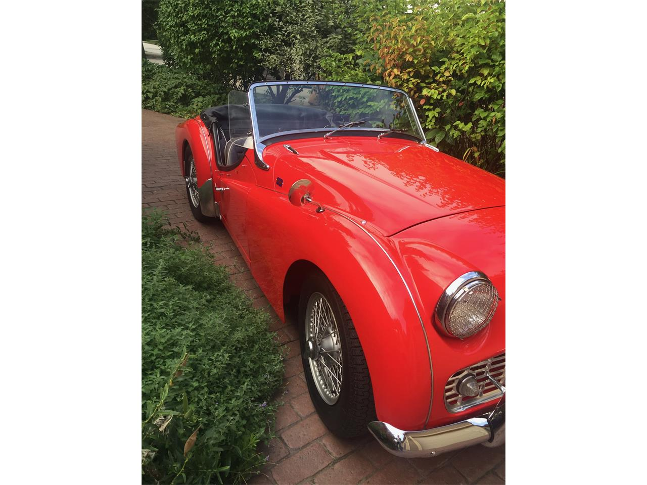 Large Picture of '59 TR3A - PVNS