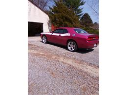 Picture of '10 Challenger - PVNY