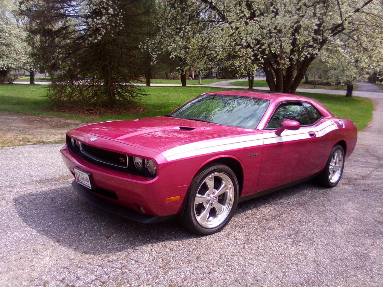 Large Picture of '10 Challenger - PVNY