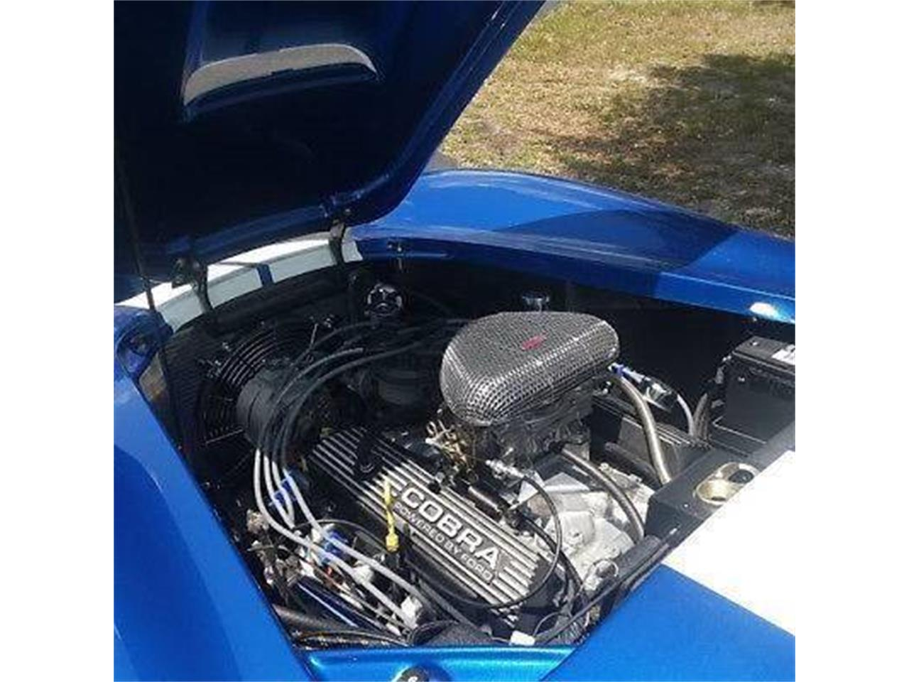 Large Picture of '65 Mustang SVT Cobra - PQI2