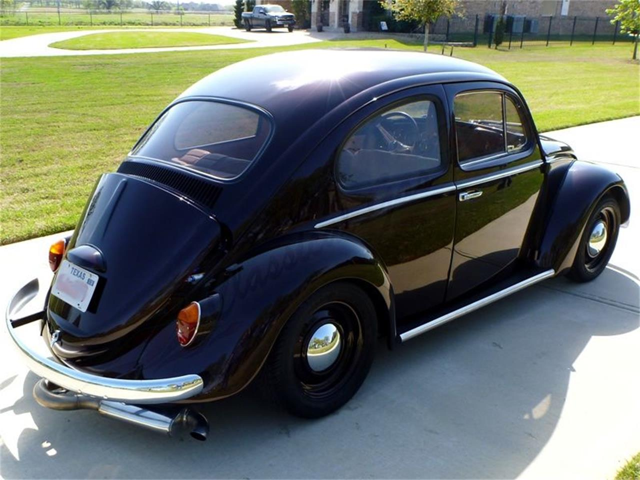 Large Picture of '64 Beetle - PVPL