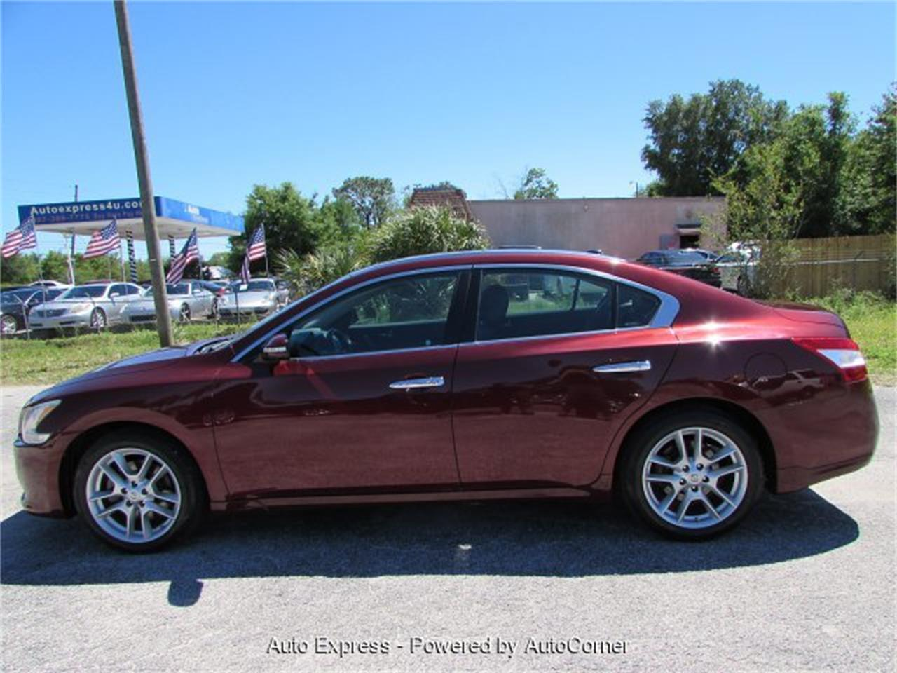 Large Picture of '10 Maxima - PVQB