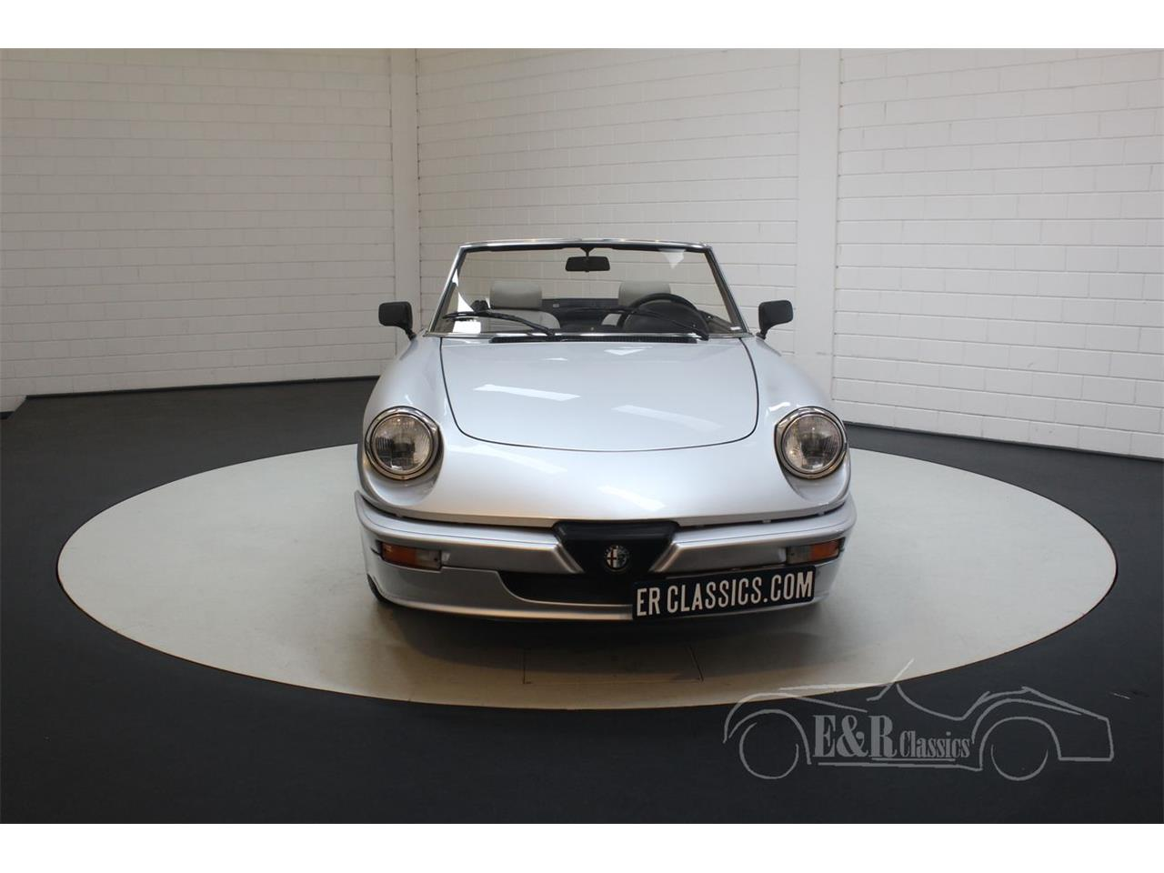 Large Picture of '86 Spider - PVTW