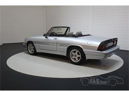 Picture of '86 Spider - PVTW