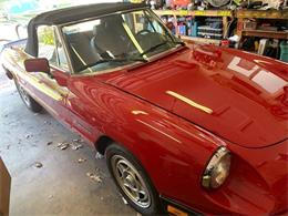 Picture of '87 Spider - PVYM