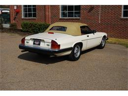Picture of '87 XJS - PW0S