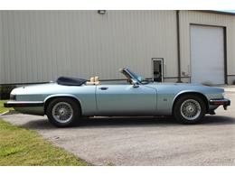 Picture of '92 XJS - PW28