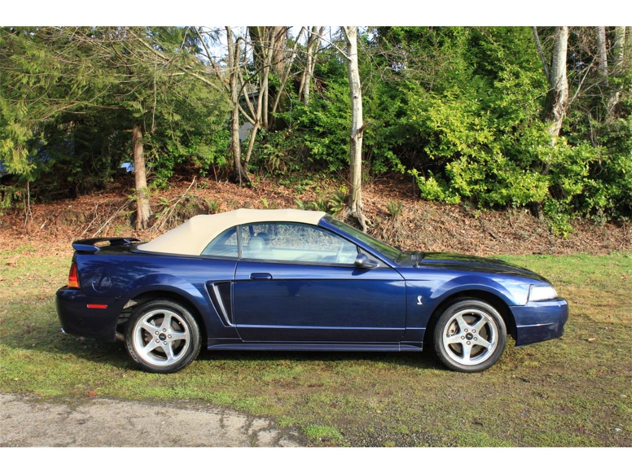 Large Picture of '01 Mustang Cobra - PW4G