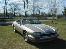 Picture of '95 XJS - PW5I
