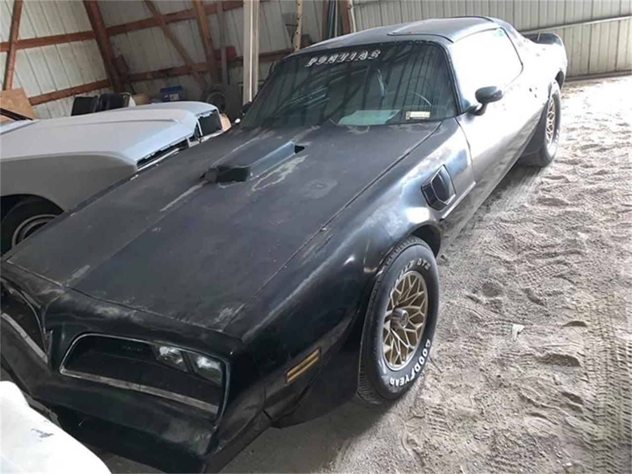 Large Picture of '77 Firebird Trans Am - PQJW