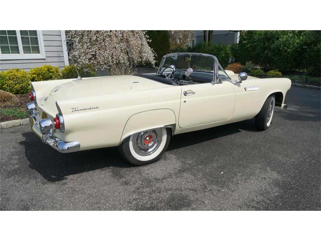 Large Picture of '55 Thunderbird - PW7C