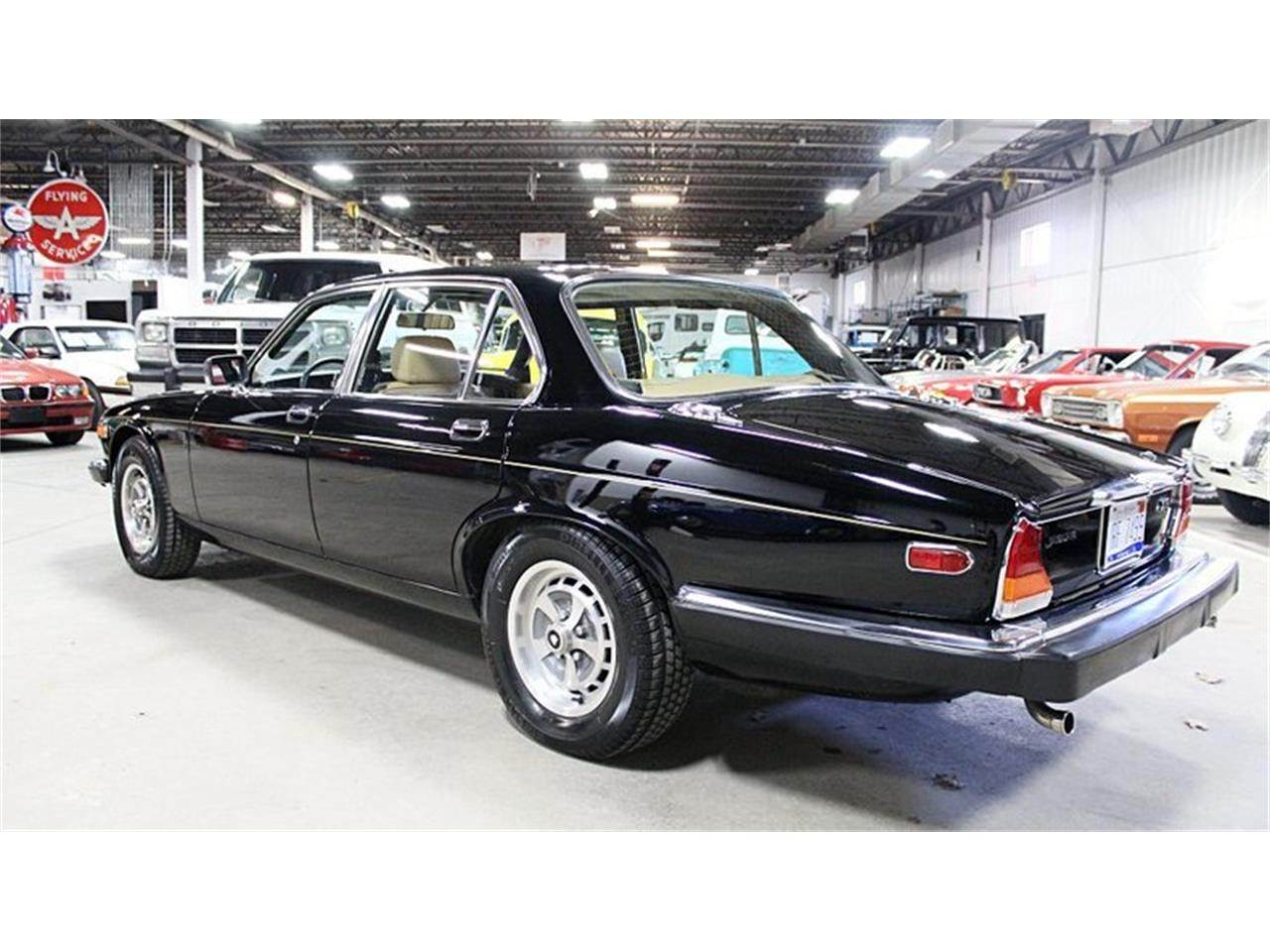 Large Picture of '83 XJ6 - PW7K
