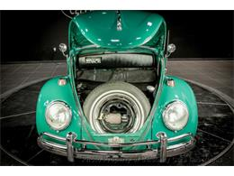 Picture of '66 Beetle - PWA0