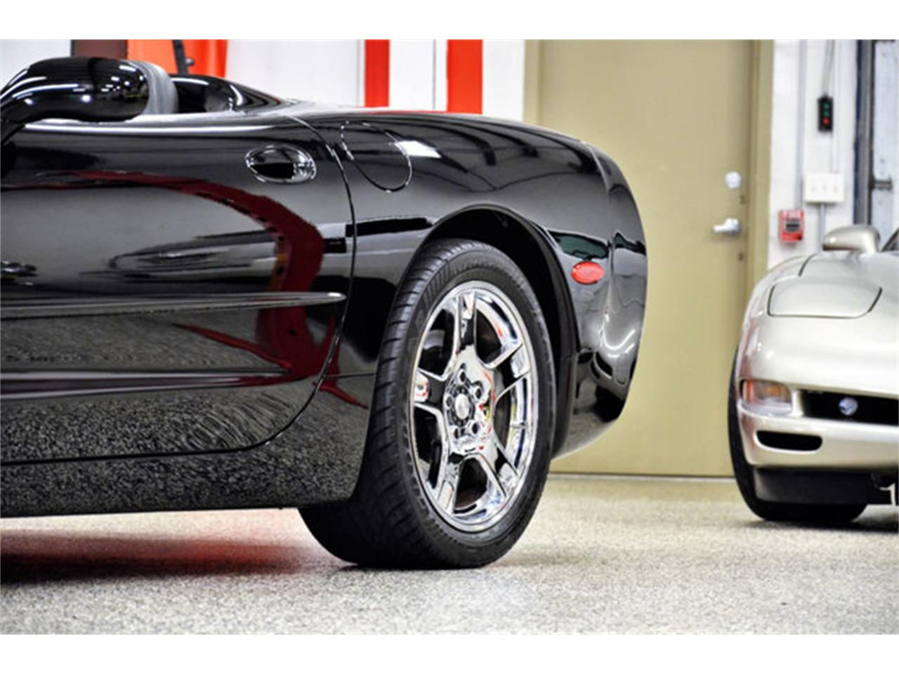 Large Picture of '99 Corvette - PWCB