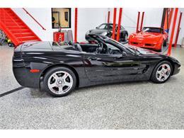 Picture of '99 Corvette - PWCB