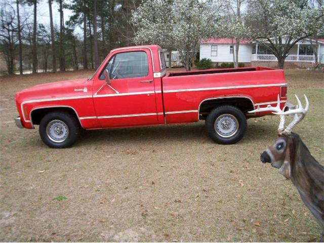 Picture of '77 Pickup - PWDG