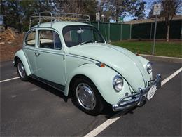 Picture of '67 Beetle - PWG3