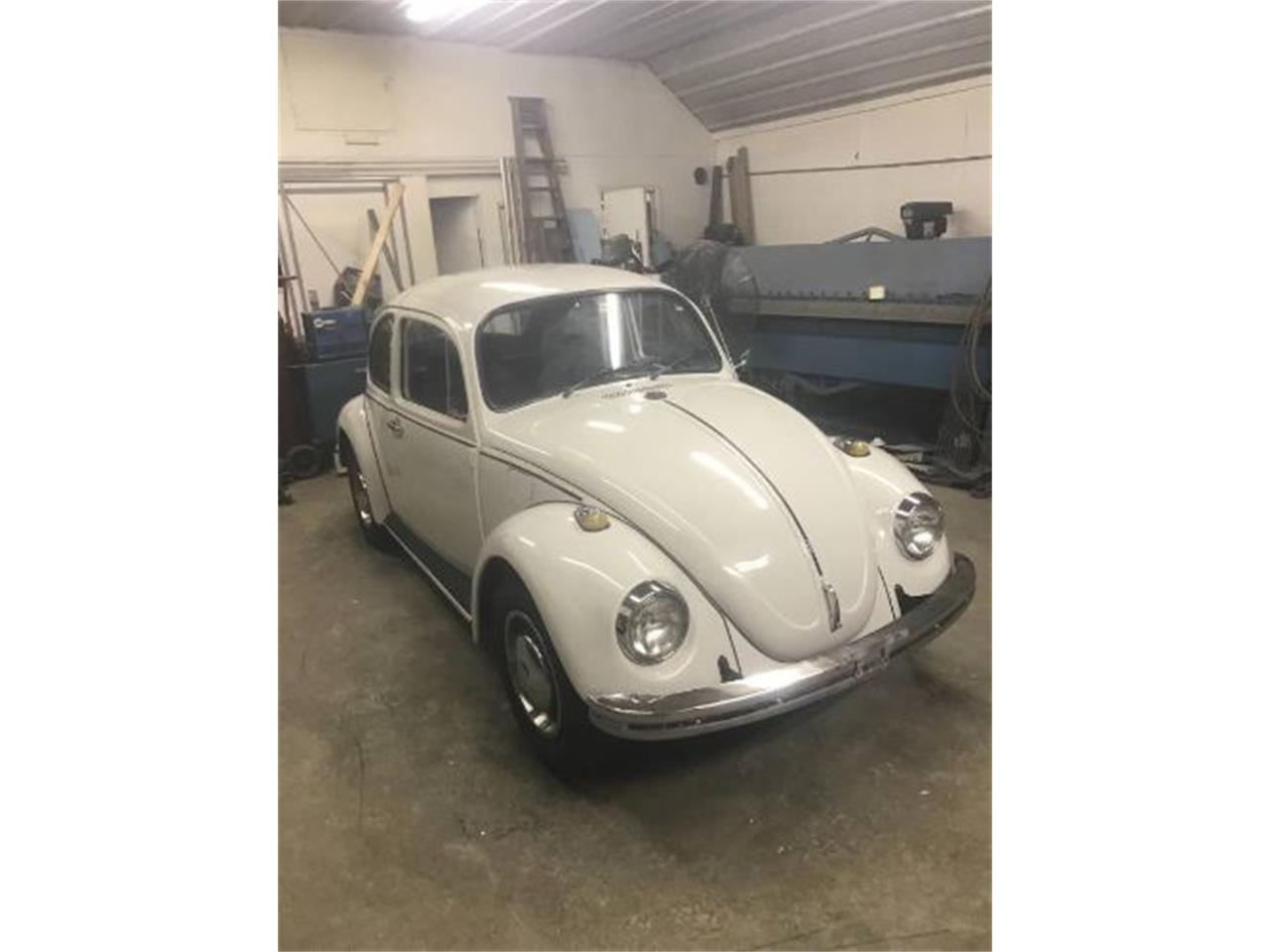 Large Picture of '69 Beetle - PWJN
