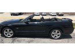 Picture of '06 Mustang - PWNT