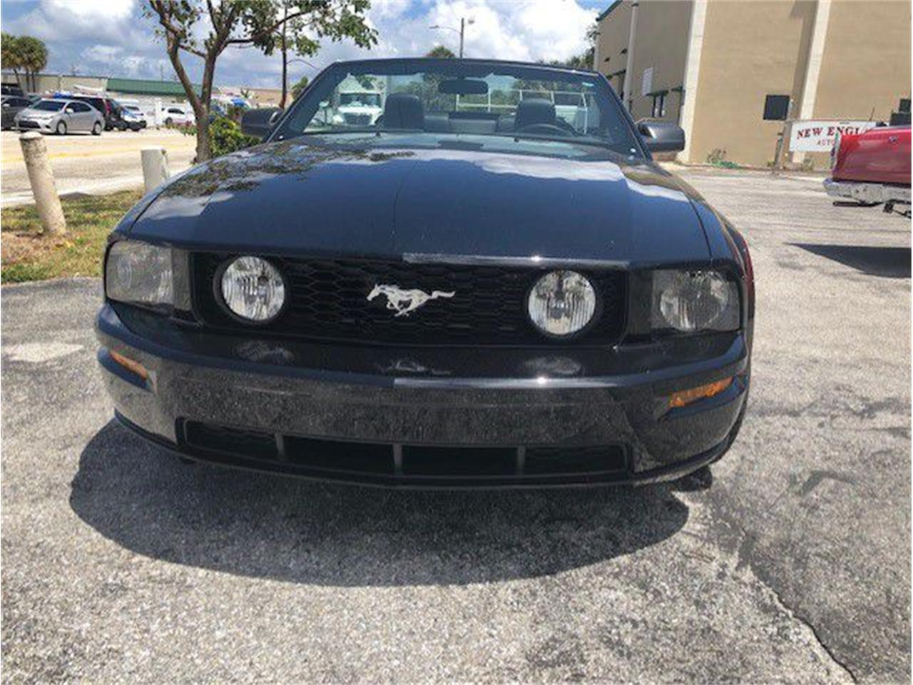 Large Picture of '06 Mustang - PWNT