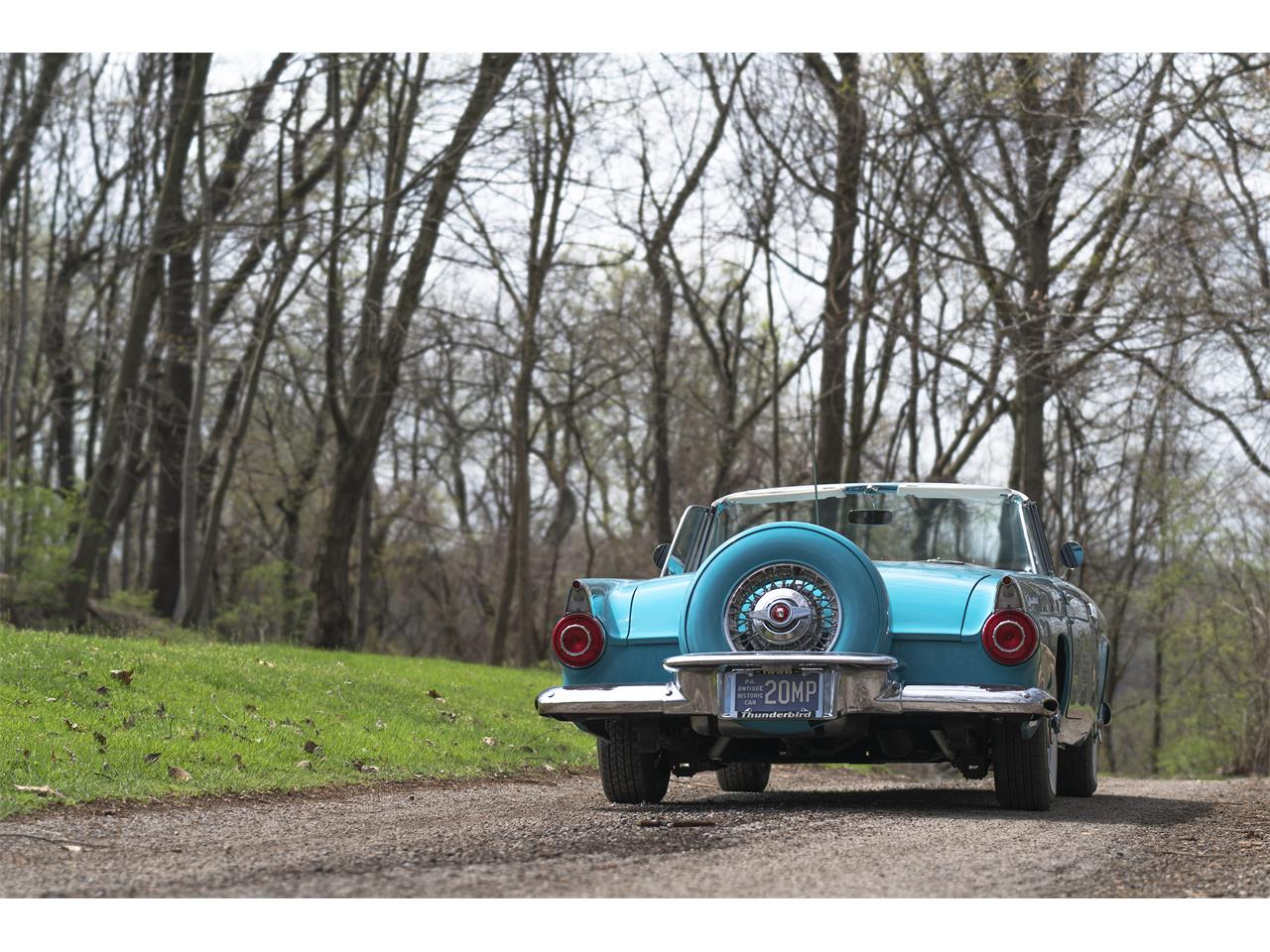 Large Picture of '56 Thunderbird - PWRL