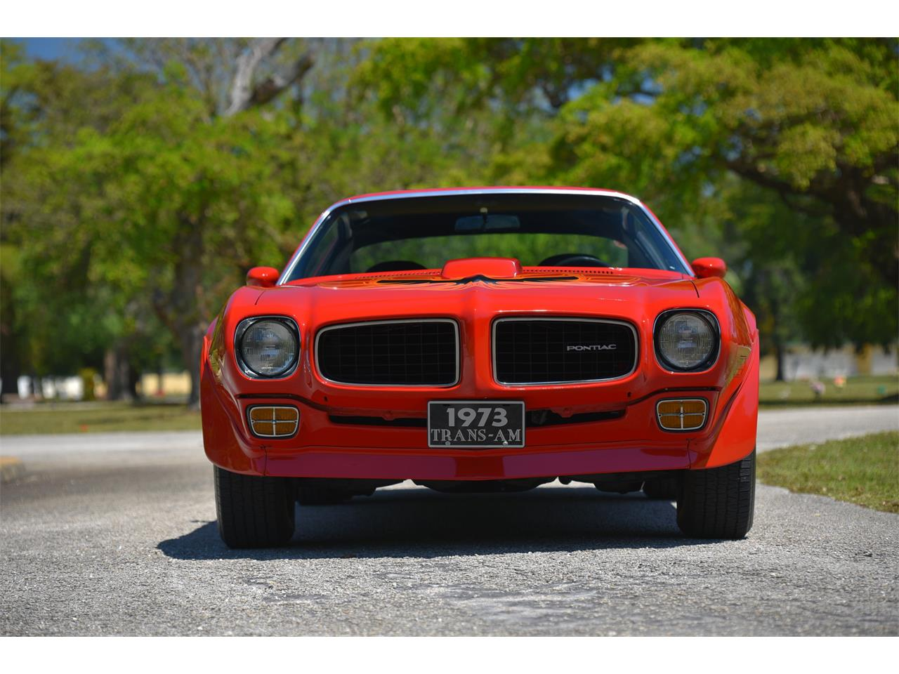 Large Picture of '73 Firebird Trans Am - PWSP