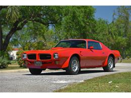 Picture of '73 Firebird Trans Am - PWSP
